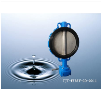 Vulcanized Seat Wafer Butterfly Valve N0 Pin /DN40-DN600