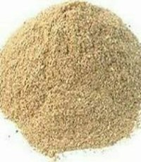 Natural Organic Oyster Mushroom Powder