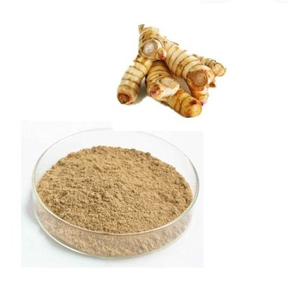Galangal Powder Age Group: For Adults