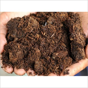 Soil and Sludge Testing Services