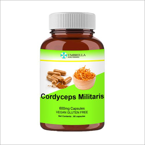 600 mg by Cordyceps Capsules