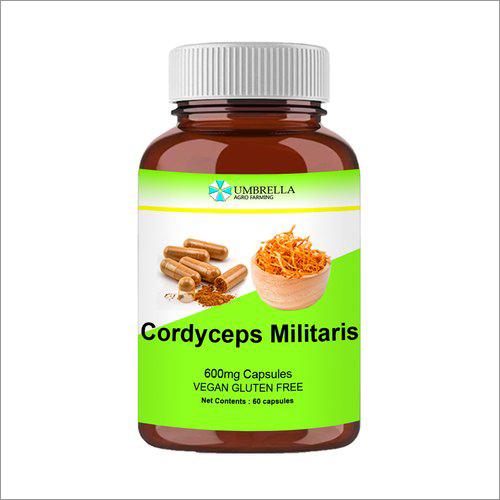 Cordyceps Capsules 600 mg