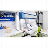 Cordyceps Militaris Laboratory Setup