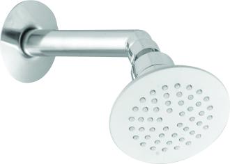Brass Bend Shower