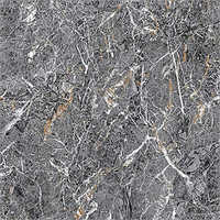 600 X 600 mm Astron Black  PGVT Floor Tiles