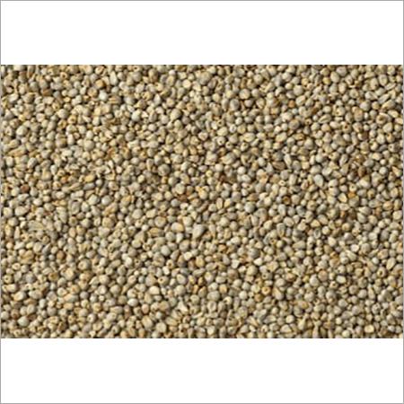 Nutrient Little Millet