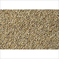 Nutrient Little Millet