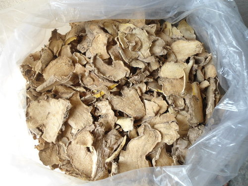 Dried PlaiThailand