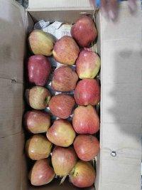 Fresh Quality Apples