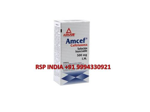 Amcef 500mg Solution