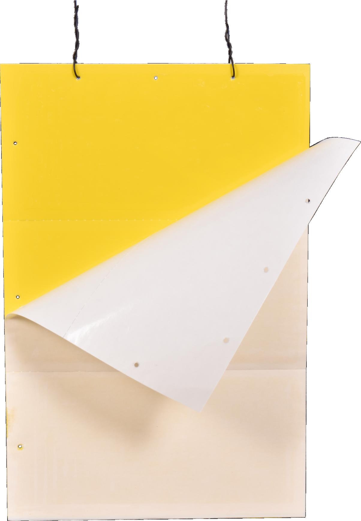 Premium Yellow Sticky Trap