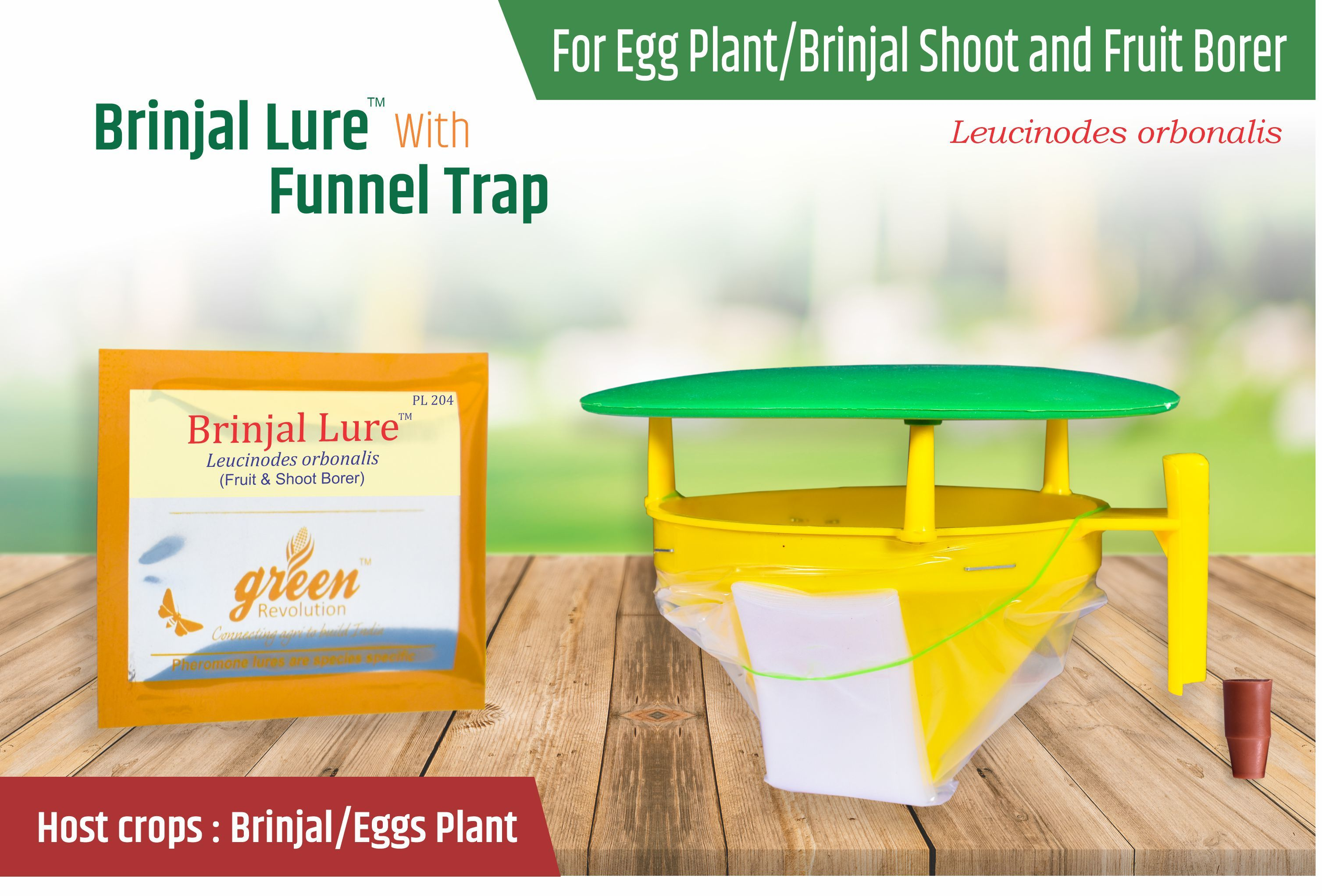 Brinjal Fruit and Shoot Borer Pheromone Trap - Leucinodes Orbonalis Pheromone Lure