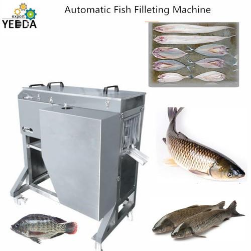 Automatic Fish Filleting Machine Capacity: 300-500 Kg/Hr