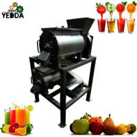 Industrial Automatic Strawberry Pulping Machine