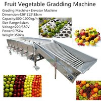 Industrial Orange Lemon Apple Kiwi Size Grading Machine