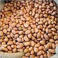 Peeled Ground Nut
