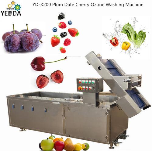 YD-X200 Plum Date Cherry Ozone Washing Machine