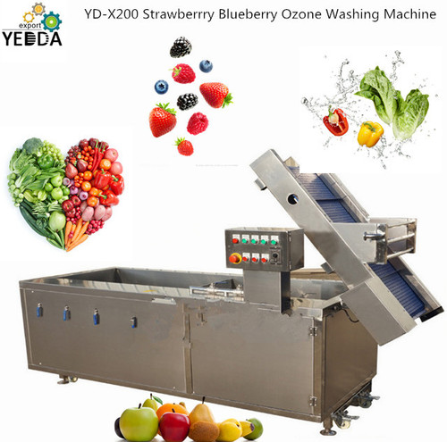 YD-X200 Strawberrry Blueberry Ozone Washing Machine