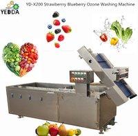YD-X200 Strawberrry Blueberry Ozone Washing Machine