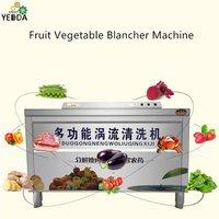Fruit Vegetable Blancher Machine
