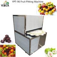 Fruit Pitting Machine