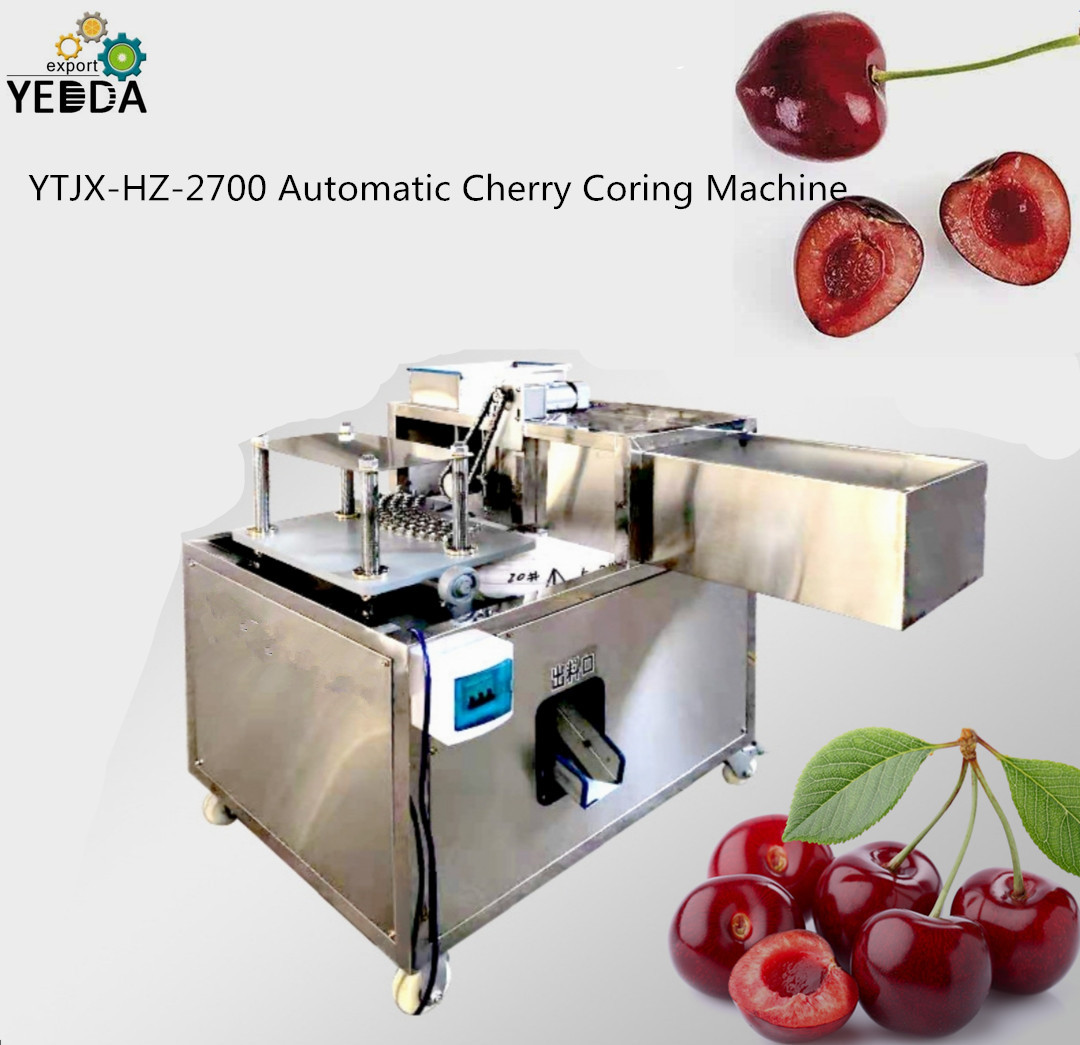 Ytjx-hz-2700 Automatic Date Coring Pitting Machine