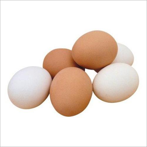 Poultry Farm Eggs