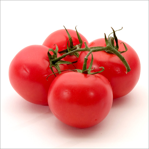Tomato / Fresh Tomatoes