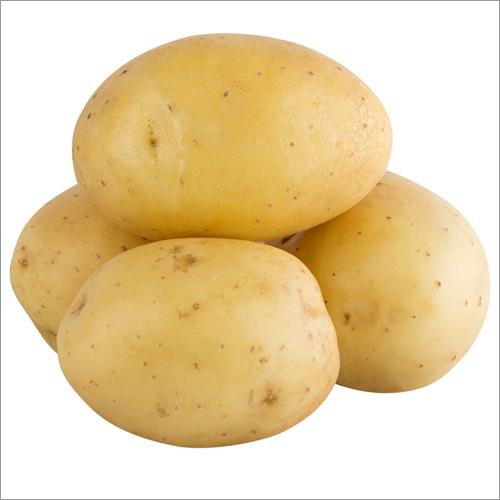 Potato / Fresh Potato