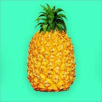 Pineapple / Fresh Pineapples