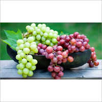 Grapes Green/Black/Red
