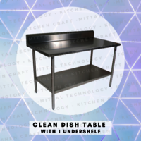 Clean Dish Table With 1 Undershelf