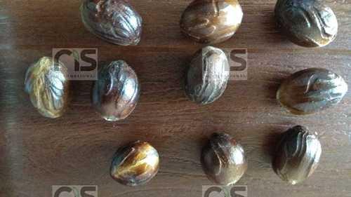 Nutmeg (jaayaphal)