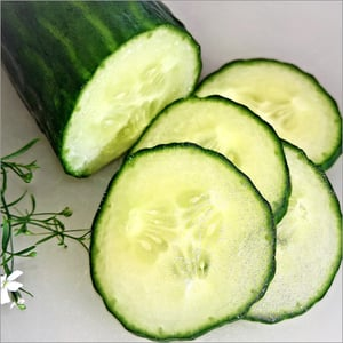 Cucumber /  Fresh Cucumber