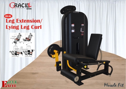 Leg Extension With Leg Curl