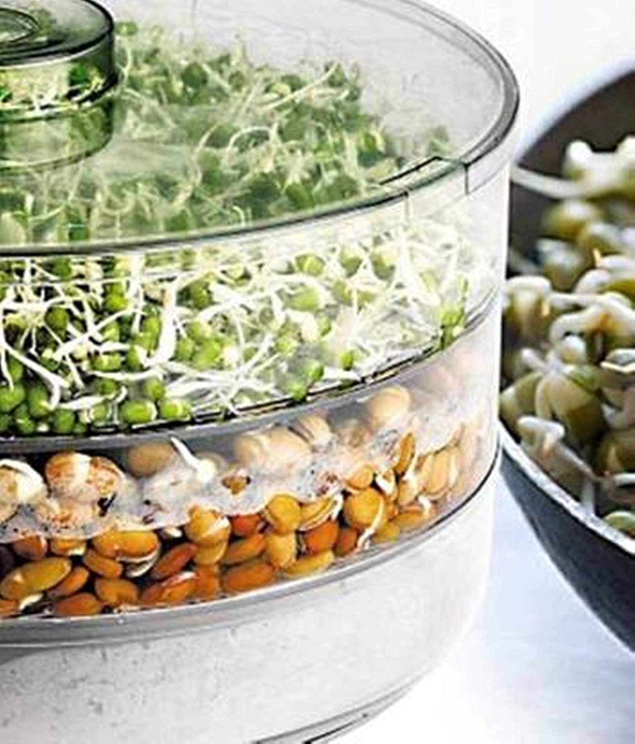 Sprout Maker