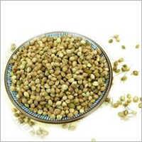 Natural Hemp Seeds
