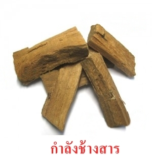 Natural Dried Acacacia Craibi Whole
