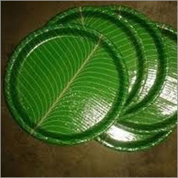 Disposable Buffet Paper Plate
