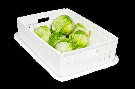 Pp Corrugated Fruit Box