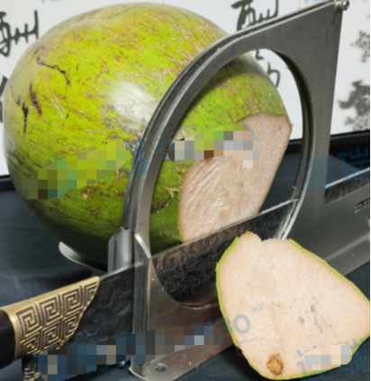 Manual Coconut top and end cutting machine