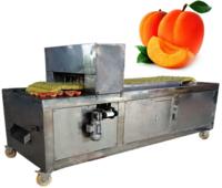 YL-5 Apricot Coring Pitting Machine