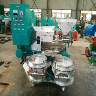 D-100 Seed Oil Cold Press Machine