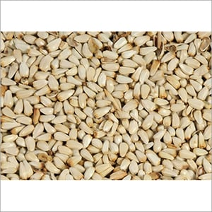 Pure Safflower Seed