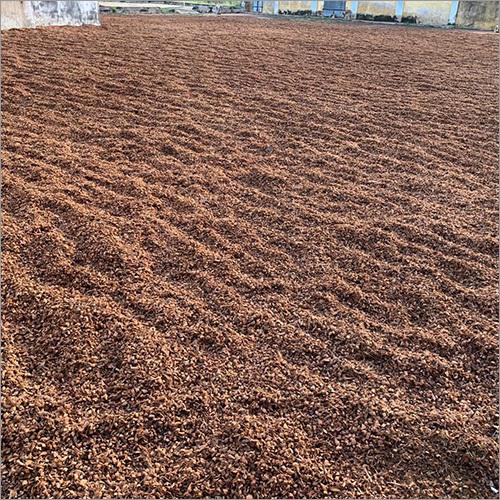 Coir Pith Dust