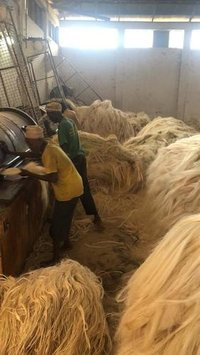 Top Quality Sisal Fiber For Sale
