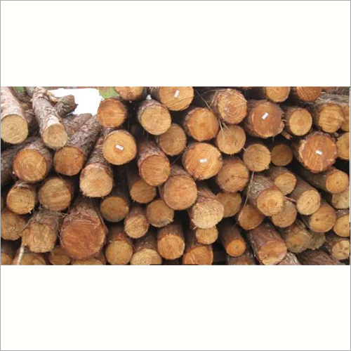 Pinewood Logs