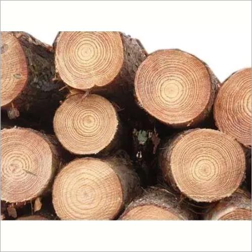 Pinewood Round Logs