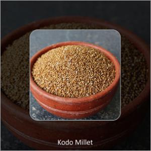 Kodo Millets