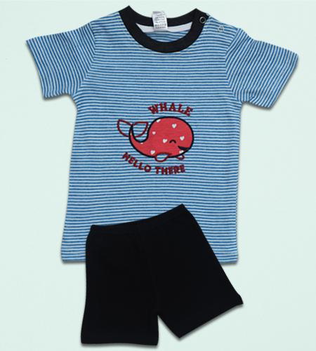 Baby Boys T-shirts and Shorts